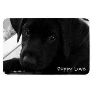 Labrador Retriever Puppy Rectangular Photo Magnet