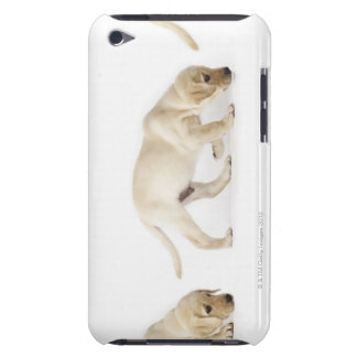 Labrador Retriever Puppy walking Barely There iPod Case