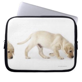 Labrador Retriever Puppy walking, montage Computer Sleeves