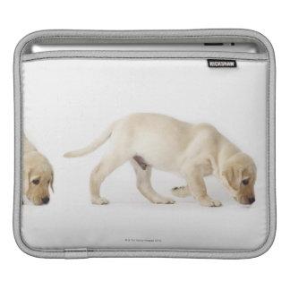 Labrador Retriever Puppy Walking Sleeve For iPads