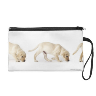 Labrador Retriever Puppy Walking Wristlet Purse