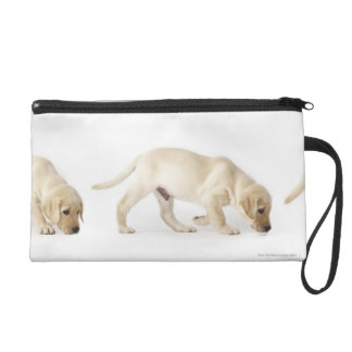 Labrador Retriever Puppy walking Wristlet Purse