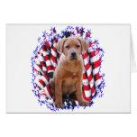 Labrador Retriever (red) Patriot Greeting Card