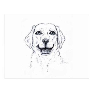 Labrador Retriever Smiling Dog Gifts Postcard