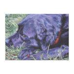 Labrador Retriever stretched canvas Canvas Prints