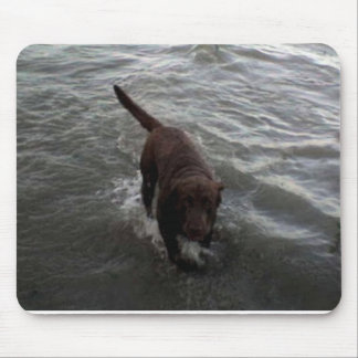 Labrador Retriever swimming Mouse Pad