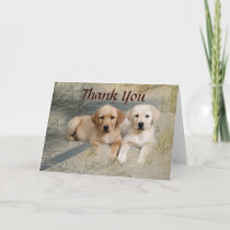 Labrador Retriever Thank You Card Pups On Beach