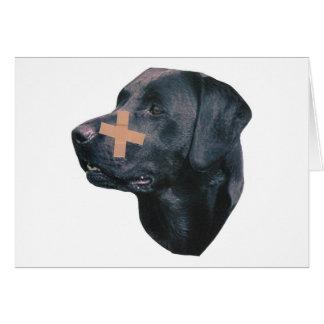 Labrador Retriever With Band-Aid Card