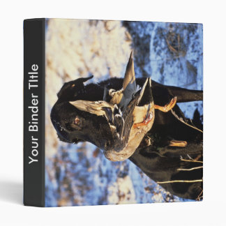 Labrador Retriever with Drake Mallard 3 Ring Binder