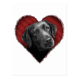Labrador Retriever with Heart Postcard