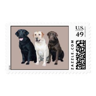 Labrador Retriver Postage Stamp