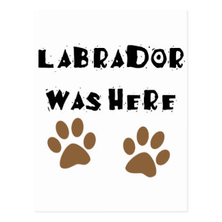 Labrador Was Here Post Cards