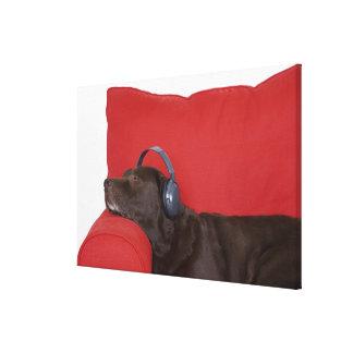 Labrador wearing headphones lying on sofa canvas print