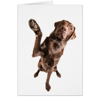 Labrador with a Big High Five Greeting Card