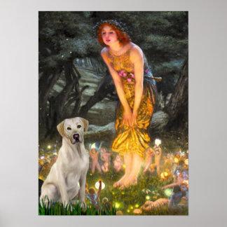 Labrador Y7 - MidEve Poster