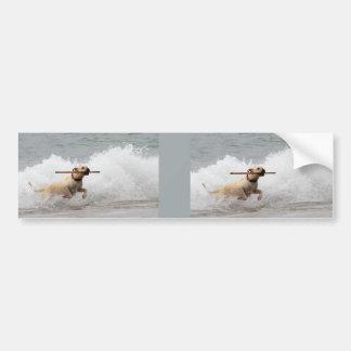 Labrador - Yellow - Go Fetch! Car Bumper Sticker