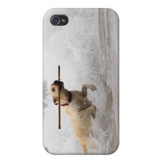 Labrador - Yellow - Go Fetch! iPhone 4/4S Covers