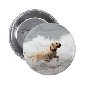 Labrador - Yellow - Go Fetch! Pinback Button