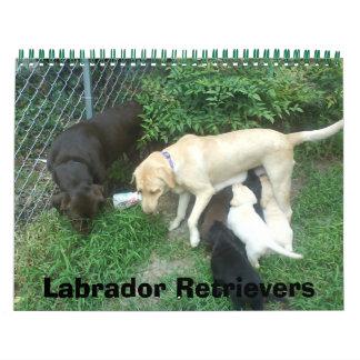 Labradores retrieveres calendarios