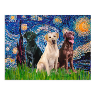 Labradors (3) - Starry Night Postcard