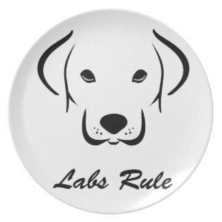 Labs Rule Plate