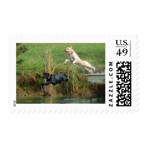Labs Stamps
