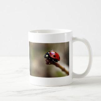 LABYBIRD CLASSIC WHITE COFFEE MUG
