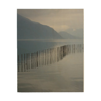 Lac du Bourget, France Wood Print