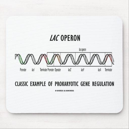 Lac Operon Classic Example Prokaryotic Gene Reg Mouse Pads