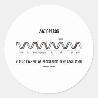 Lac Operon Classic Example Prokaryotic Gene Reg Classic Round Sticker