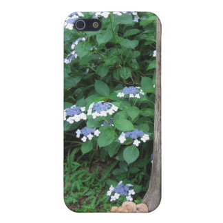 Lace Cap Hydrangea Hard Shell Case for iPhone 4