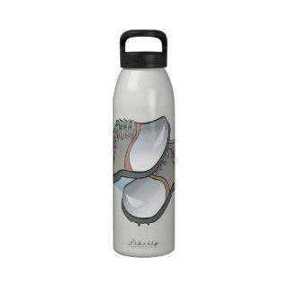 Lace Em Up Reusable Water Bottle