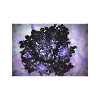 Lace Flower in Black Canvas Print