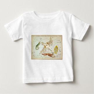 Lacerta, Cygnus, Lyra, Vulpecula and Anser Baby T-Shirt