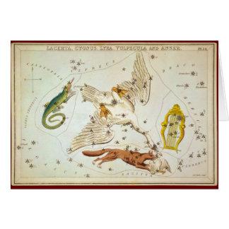 Lacerta, Cygnus, Lyra, Vulpecula and Anser Card