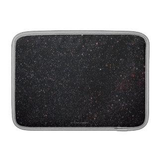 Lacerta MacBook Sleeve