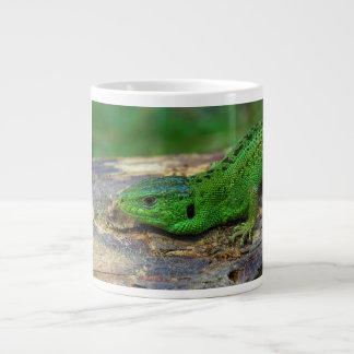 Lacerta masculino Agilis del lagarto de arena Tazas Extra Grande