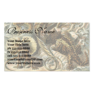 Lacertilia by Ernst Haeckel Vintage Lizard Animals Business Card