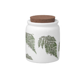 Lacey fern background candy jar