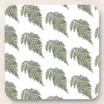 Lacey fern background drink coasters