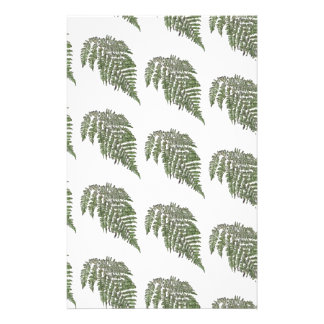 Lacey fern background stationery