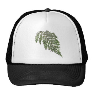 Lacey fern mesh hat