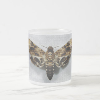 Lachesis del Acherontia de Hawkmoth de la cabeza Taza De Café Esmerilada