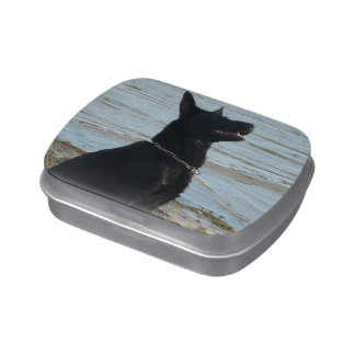 Lacquer Black German Shepherd at the Beach Jelly Belly Candy Tins