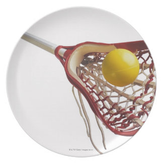Lacrosse stick and ball plate