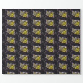Lactoria cornuta wrapping paper