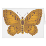 Lacy Butterfly Greeting Cards