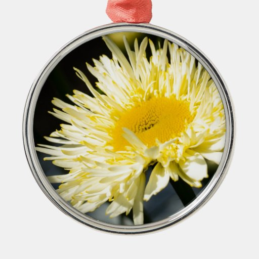 Lacy Daisy Round Metal Christmas Ornament