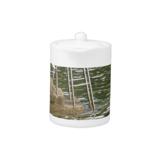 Ladder descending into the sea water teapot