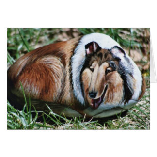 Laddie dog rock card
